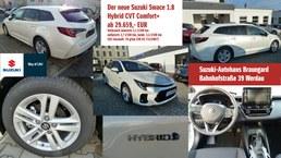 Suzuki Braungard Werdau Swace