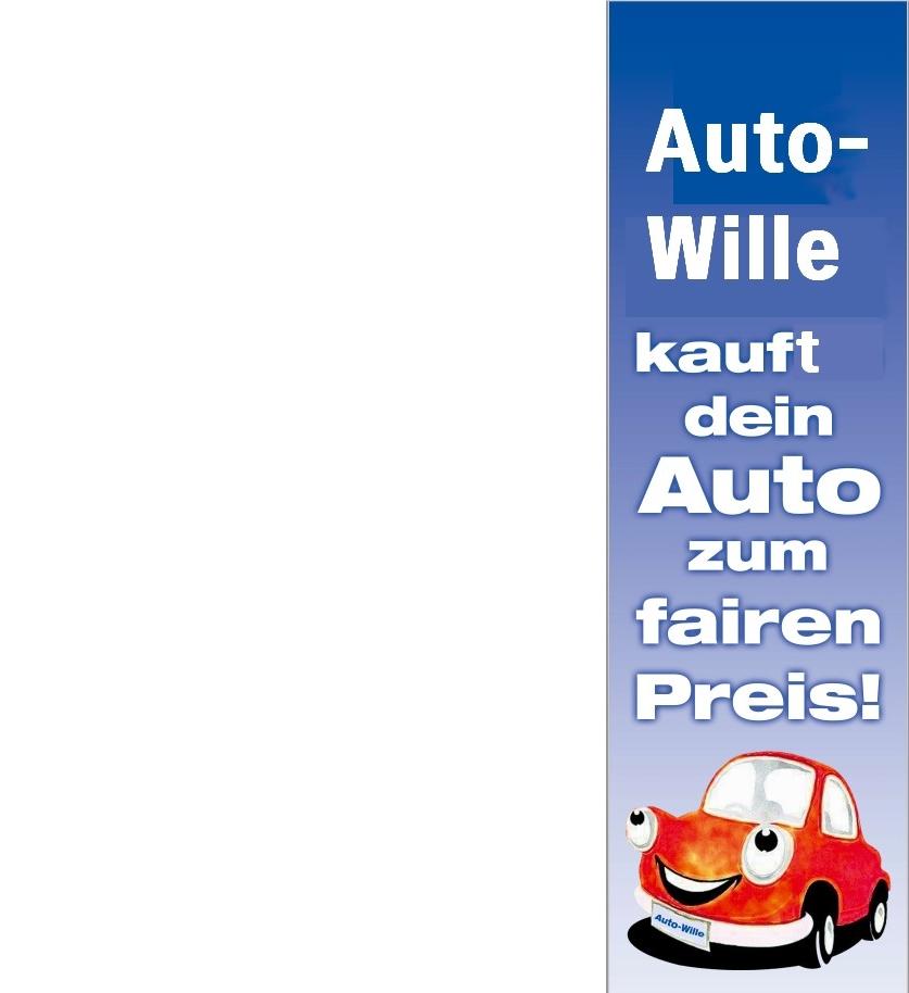 Fahne Auto-Wille 02.jpg